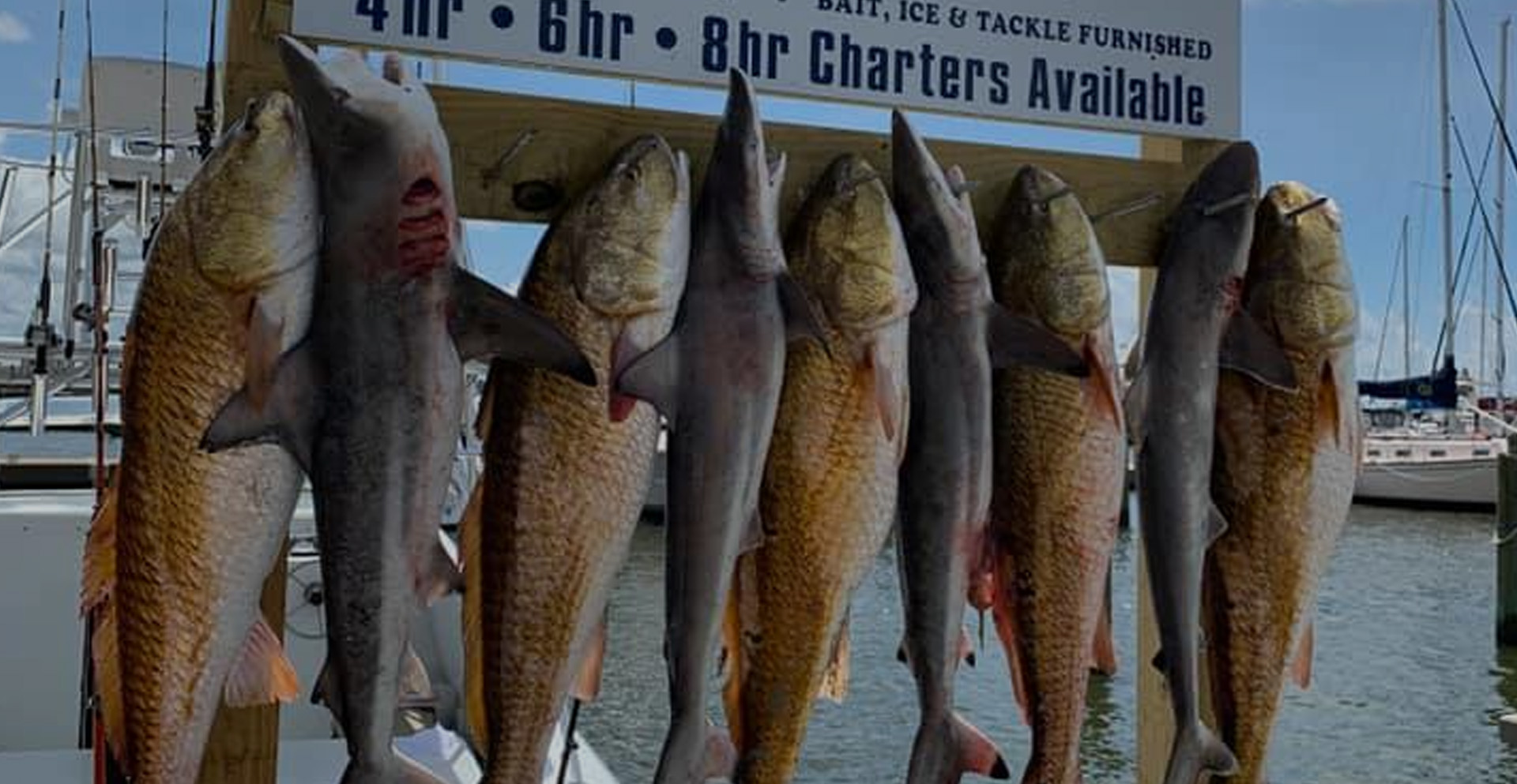 Mississippi Gulf Coast Fishing Charters